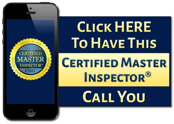 Certified Master Inspector Button